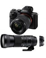 Sony A7 Mark II + FE 28-70/3.5-5.6 OSS + Sigma MC-11 + 150-600/5-6.3 C DG OS HSM